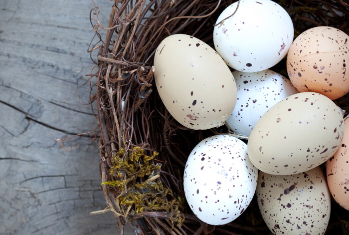 What Does it Mean to be an Egg Donor?